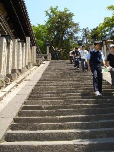 Taking the stairs for weight loss.