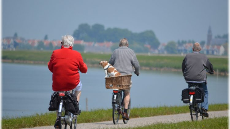 Does Seniors Staying Fit Help Prevent Illness and Disease?